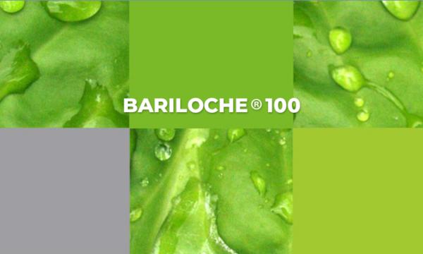 Bariloche 100 : herbicida