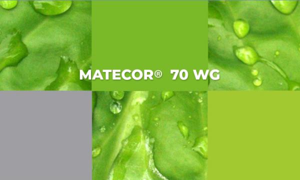 Matecor 70 WG : herbicida