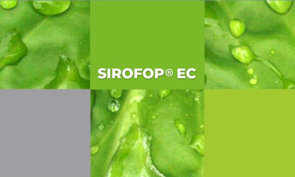 Sirofop EC : herbicida