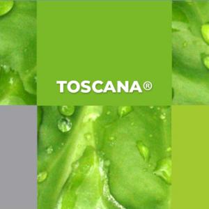 Toscana : herbicida